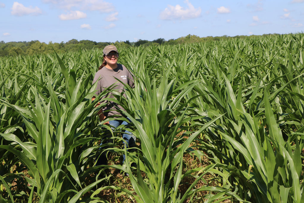 JWCC ag student in field of corn